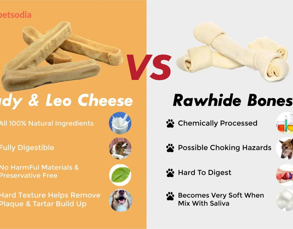 Cheese Dog Chew V.S. Rawhide Bones